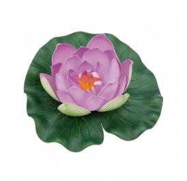 nenuphar-pondolily-violet