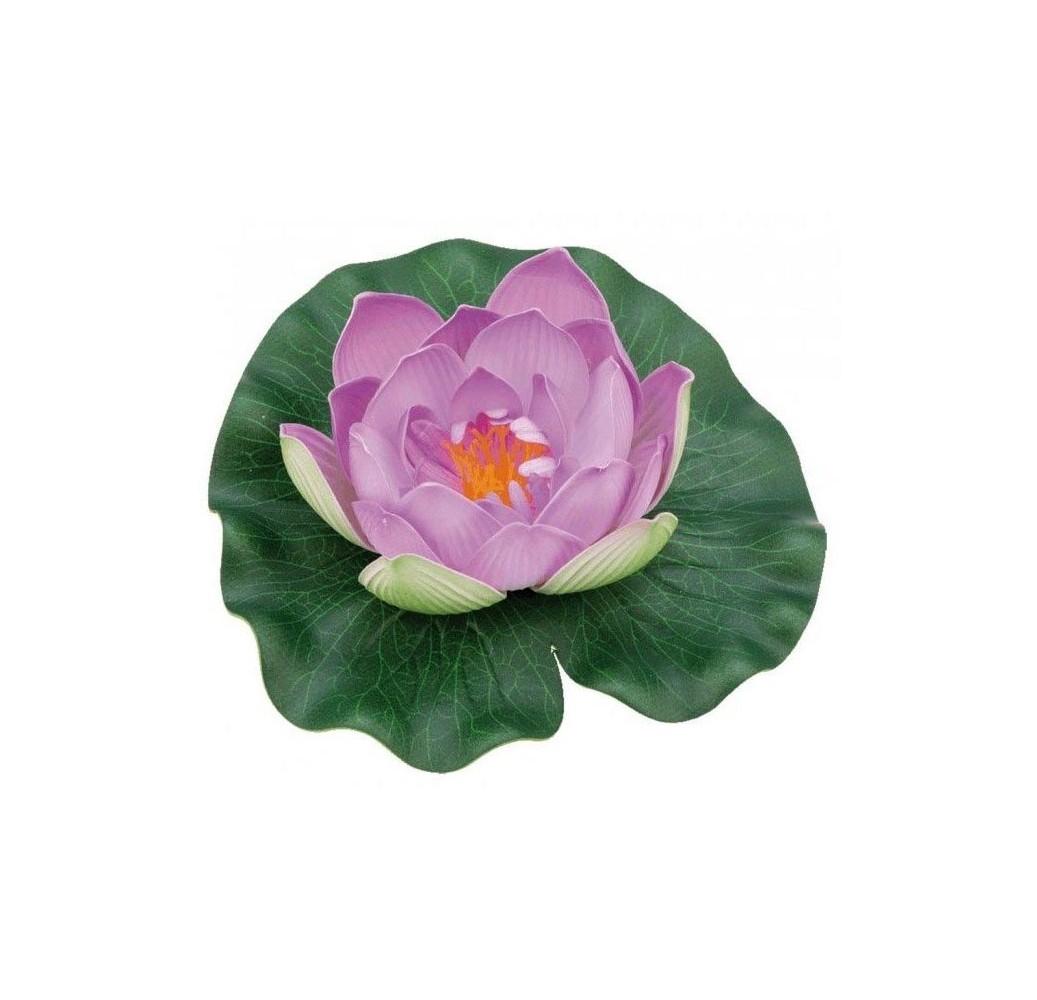 nenuphar-pondolily-violet-bassin-koi