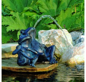 sujet-cracheur-grenouille-couple-bassin-koi