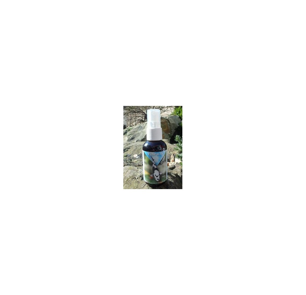 traitement-propolis-spray-50ml
