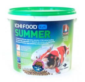 Ichi_-food_summer_medium_4-5mm_4kg