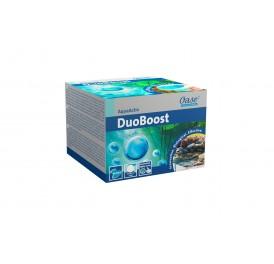 BACTERIES D ENTRETIEN DUOBOOST OASE 2CM 250ML POUR 30M3
