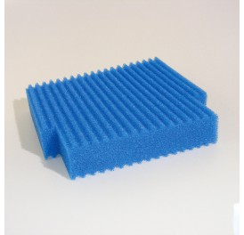 Mousse-bleue -large-profilclear